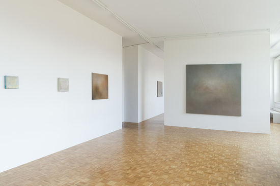 Artists, Michael Biberstein, , Foto: Anna + Peter Schudel Zürich, Exhibition 2016