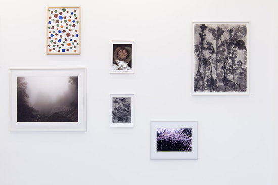 Artists, Cécile Wick, , Foto: Anna + Peter Schudel Zürich, Exhibition 2015